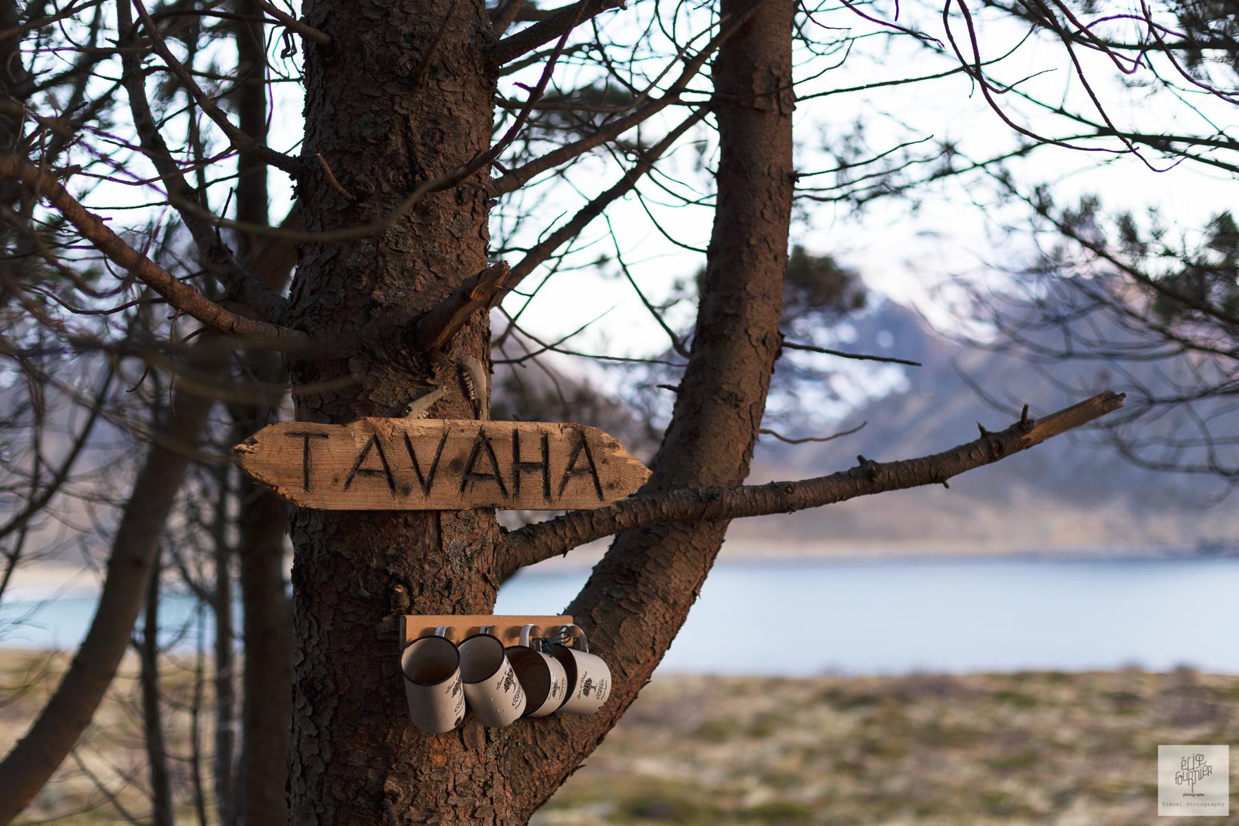 Wild Norway - Photographies de la Norvège par Elise Fournier Photographe